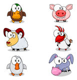 Cartoon animals. There are some cartoon animals (duck, ram, goose, pig, rooster,  donkey Stock Photos