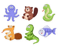 Cartoon animals collection Stock Images