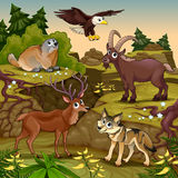 Cartoon animals, deer, eagle, groundhog, steinbock Royalty Free Stock Photography