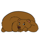 Cartoon animals for kids. Cute bear. Cartoon animals for kids. Cute bear smiles Stock Photography