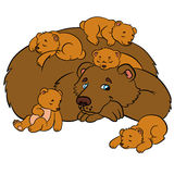 Cartoon animals for kids. Daddy bear. With his sleeping little cute baby bears Royalty Free Stock Photo