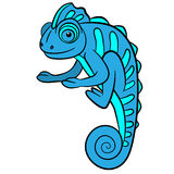 Cartoon animals for kids. Little cute blue chameleon. Royalty Free Stock Images