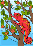 Cartoon animals for kids. Little cute red chameleon  Royalty Free Stock Photography