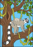 Cartoon animals for kids. Mother lemur with her baby. Cartoon animals for kids. Mother lemur stands on the tree branch with her little cute baby and smiles Royalty Free Stock Photo