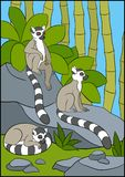 Cartoon animals for kids. Three little cute lemurs. Cartoon animals for kids. Three little cute lemurs on the stones Stock Photo