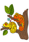 Cartoon animals for kids. Two little cute chameleons. Stock Images
