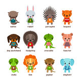 Cartoon animals. Leopard and walrus,rabbit and dog Royalty Free Stock Images