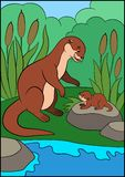 Cartoon animals. Mother otter looks at her little cute baby otter. And smiles royalty free illustration