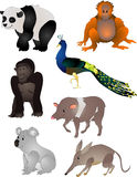 Cartoon animals vector Royalty Free Stock Images