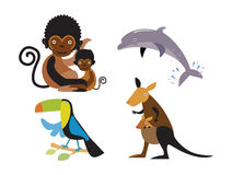 Cartoon animals. Vector set of cartoon animals Stock Images