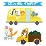 Cartoon animals in vehicles Stock Image