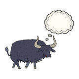 Cartoon annoyed hairy ox with thought bubble Royalty Free Stock Photography