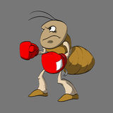 Cartoon ant boxer. Colorful vector illustration of angry cartoon ant boxer Stock Photography