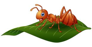 Cartoon ant on the leaf Royalty Free Stock Photo
