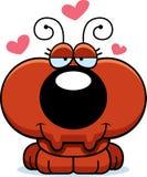 Cartoon Ant Love Royalty Free Stock Photos