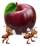 Cartoon ants carrying apple Royalty Free Stock Images