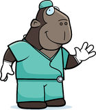 Cartoon Ape Doctor Stock Photos