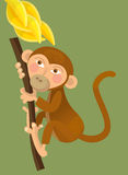 Cartoon ape - monkey - illustration for the children. Beautiful and colorful illustration of a monkey for kids Stock Images