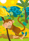 Cartoon ape - natural theme in background. Beautiful illustration for the children Royalty Free Stock Images
