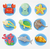 Cartoon Aquarium animal icons set ,fish icons Stock Image