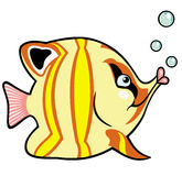 Cartoon aquarium fish Stock Photos