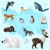 Cartoon Arctic Fauna Set Royalty Free Stock Photography