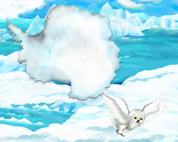 Cartoon arctic owl with continent map Stock Image