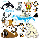 Cartoon arctic set. Set with cartoon animals of arctic.Pictures for little kids Stock Photo