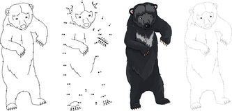 Cartoon Asiatic black bear. Vector illustration. Dot to dot game Royalty Free Stock Photos