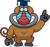 Cartoon Baboon Professor Stock Photos