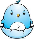 Cartoon Baby Bluebird Egg Royalty Free Stock Photos