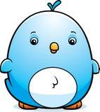 Cartoon Baby Bluebird Royalty Free Stock Photography