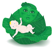 Cartoon baby in the cabbage Stock Images