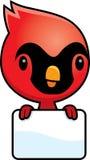 Cartoon Baby Cardinal Sign Royalty Free Stock Image