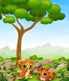 Cartoon baby cheetah with kitten lay down in the jungle. Illustration of Cartoon baby cheetah with kitten lay down in the jungle Royalty Free Stock Photo