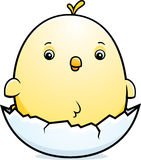 Cartoon Baby Chicken Egg Royalty Free Stock Photo