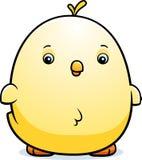 Cartoon Baby Chicken Stock Images
