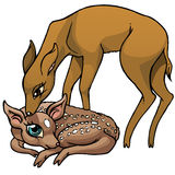Cartoon baby deer with mother. Cute cartoon baby deer with its mother stock illustration