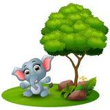 Cartoon baby elephant sitting under a tree on a white background Royalty Free Stock Photo