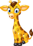 Cartoon baby giraffe sitting isolated on white background Stock Image