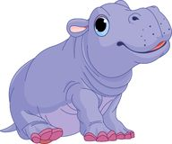 Cartoon baby Hippo boy Stock Images