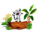 Cartoon baby koala on tree trunk Stock Image