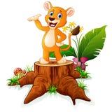 Cartoon baby lion presenting on tree stump Royalty Free Stock Photography