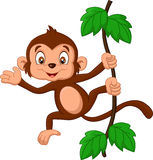 Cartoon baby monkey waving Stock Images
