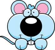 Cartoon Baby Mouse Peeking Royalty Free Stock Image