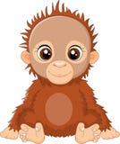 Cartoon baby orangutan sitting Stock Photography
