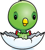Cartoon Baby Parrot Hatching Stock Images