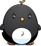 Cartoon Baby Penguin Stock Photography