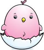 Cartoon Baby Pink Parakeet Egg Stock Image