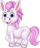 Cartoon baby pony horse posing isolated on white background Stock Photos